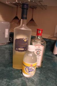 gin drink ingredients