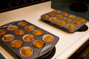 pumpkin muffin glop