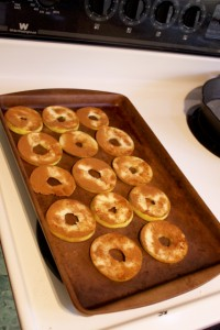 pre baked apple chips