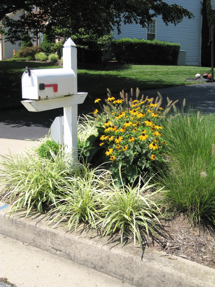 Low Maintenance Landscaping Ideas Curb Appeal Plants
