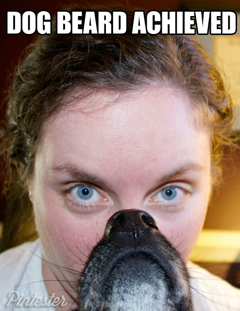 pintester-dog-beard