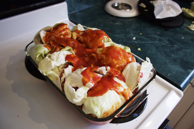 cabbage rolls in pan